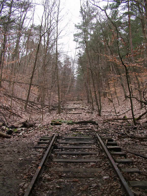 Photo: Abandoned SBahn Line, Dreilinden