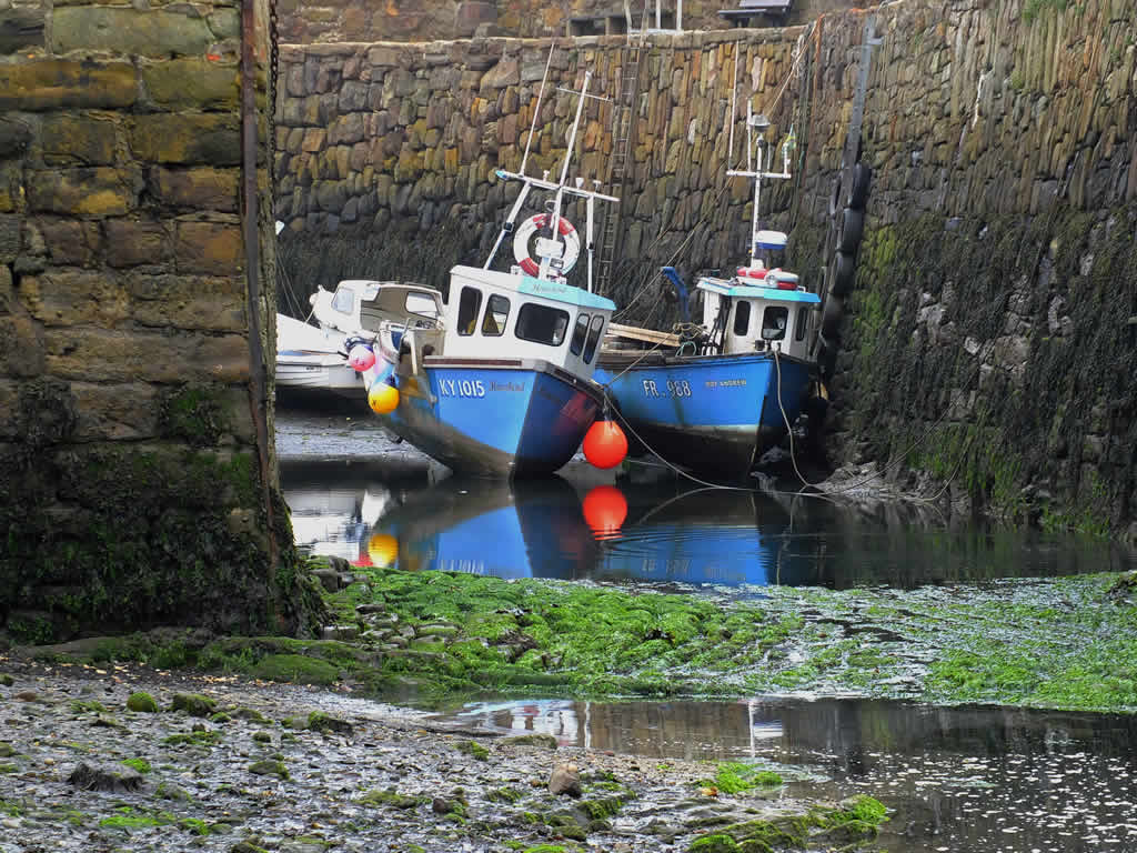 Photo: Crail Harbour