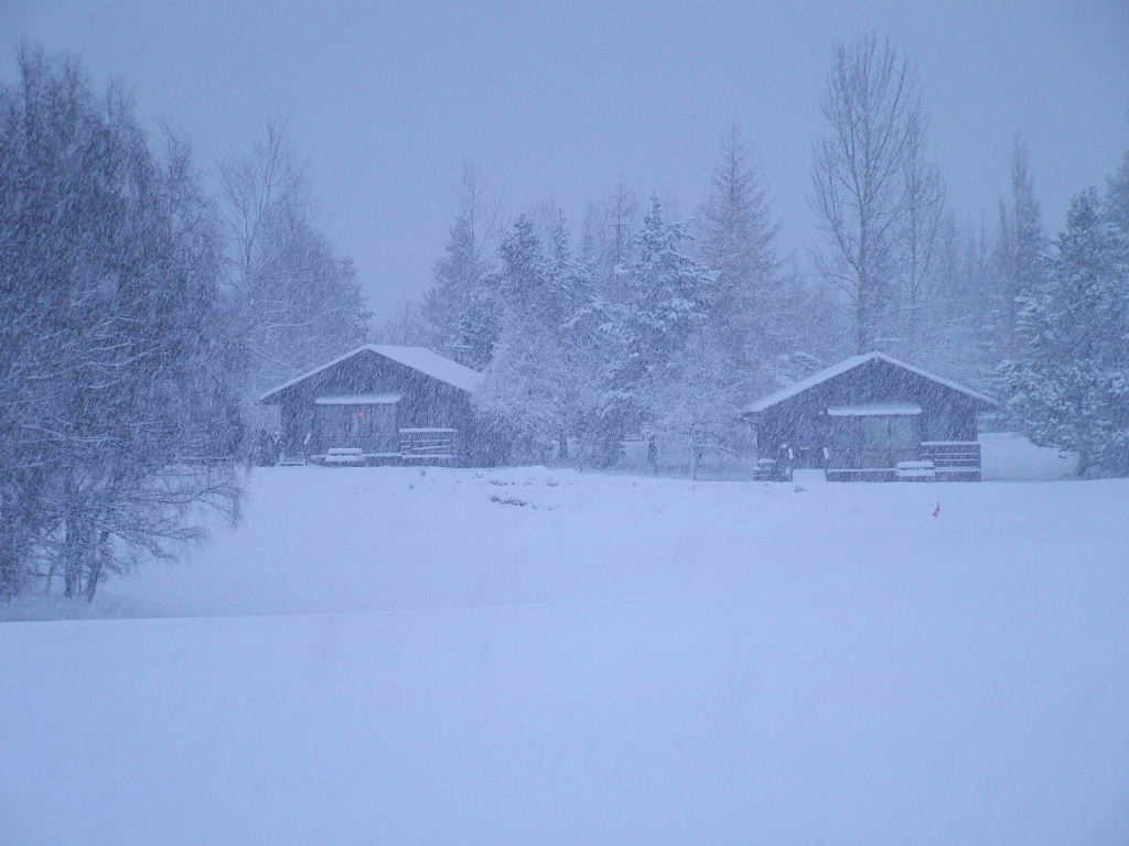 Photo: Chalets in the snow, Aviemore