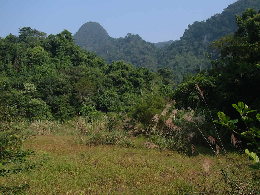 Photo: Cuc Phuong National Park landscape