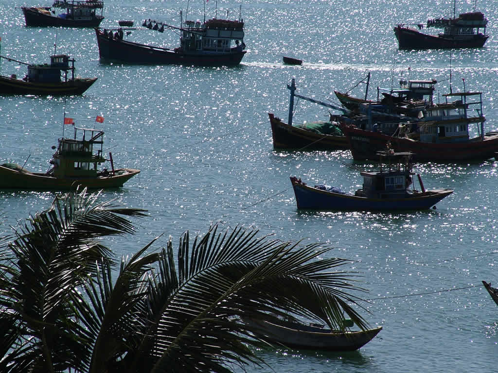 Photo: Mui Ne, Fishing boats