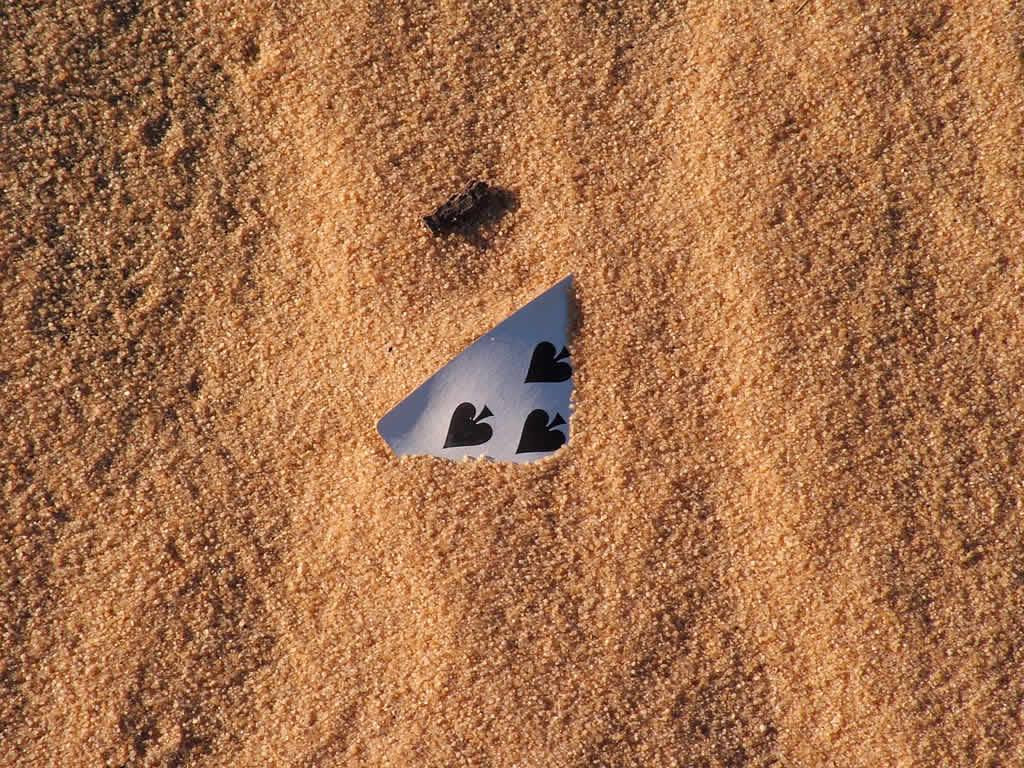 Photo: Mui Ne, Spades in the sand dunes